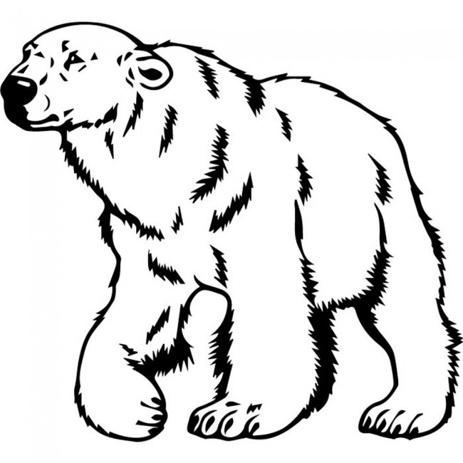 outline of a polar bear free printable polar bear coloring pages for kids of bear outline polar a