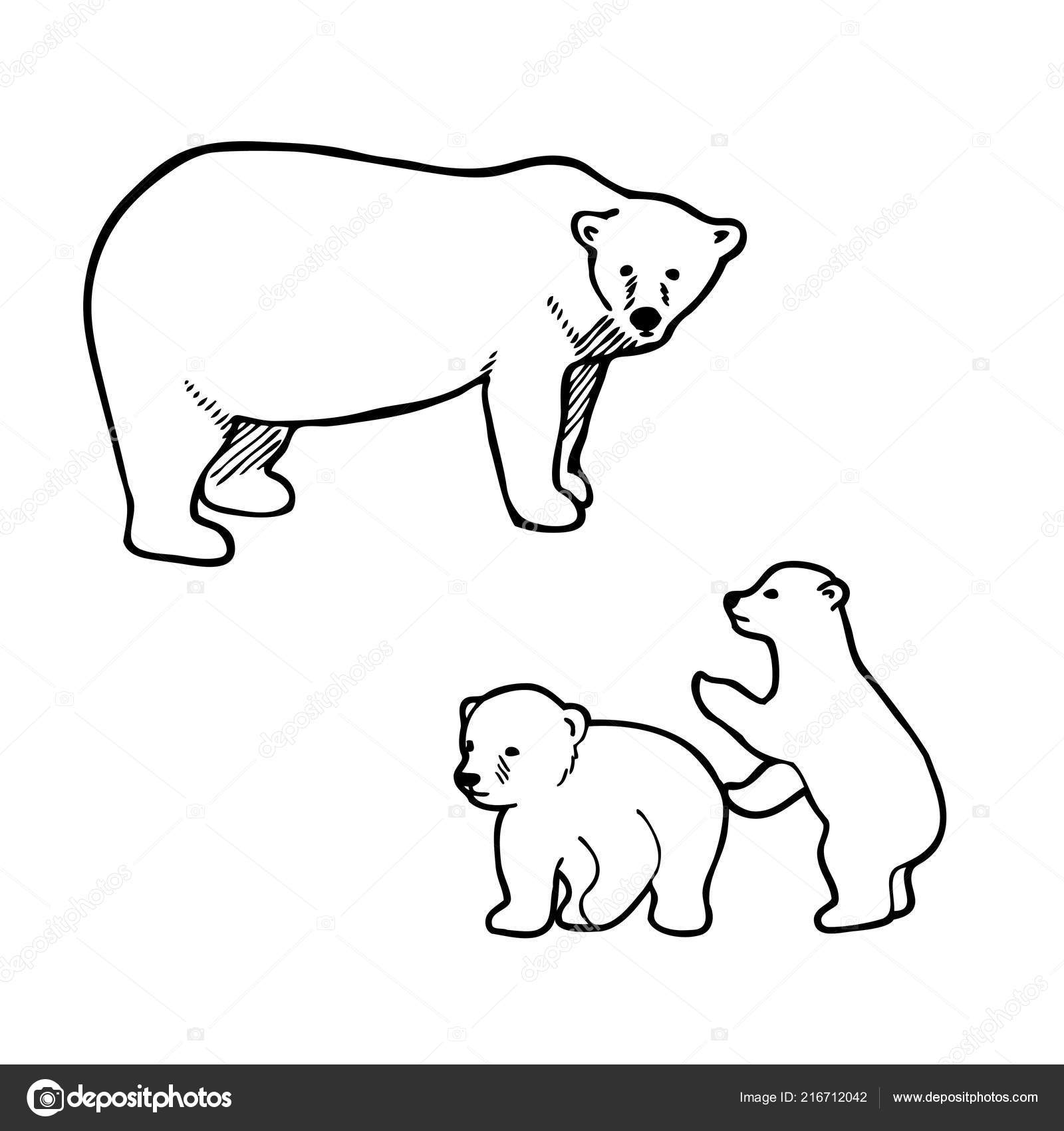 outline of a polar bear polar bear outline drawing free download on clipartmag of polar outline bear a