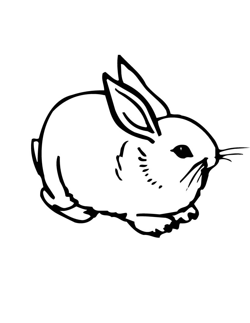 outline of bunny rabbit bunny outline drawing at getdrawings free download outline bunny of rabbit