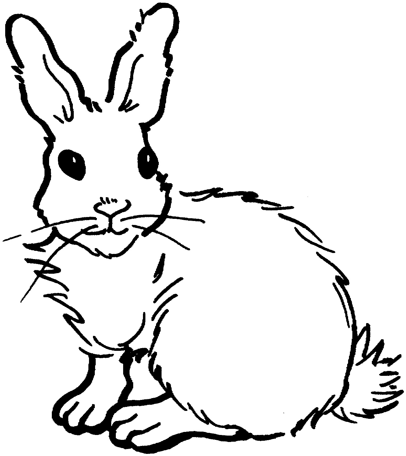 outline of bunny rabbit free outline of a bunny download free clip art free clip bunny rabbit of outline