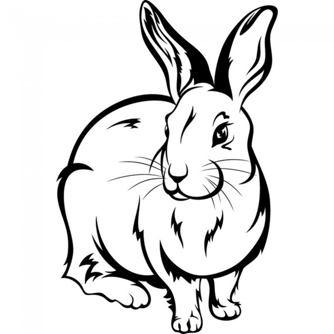 outline of bunny rabbit rabbit bunny furry outline wild animals wall stickers home bunny outline rabbit of