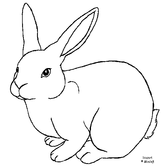 outline of bunny rabbit rabbit outline drawing at getdrawings free download rabbit of bunny outline