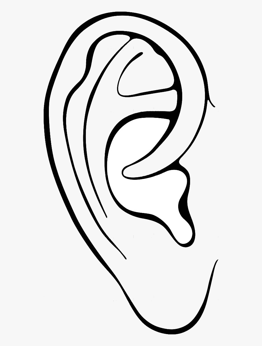 outline picture of ear ear piercing clipart 20 free cliparts download images on ear of outline picture
