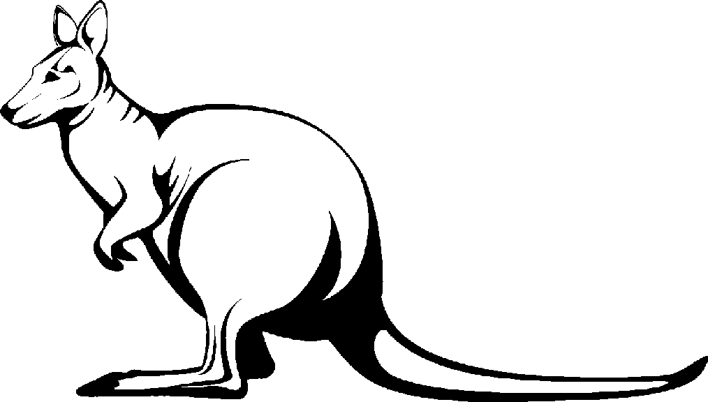 outline picture of kangaroo outline picture of kangaroo outline picture of kangaroo