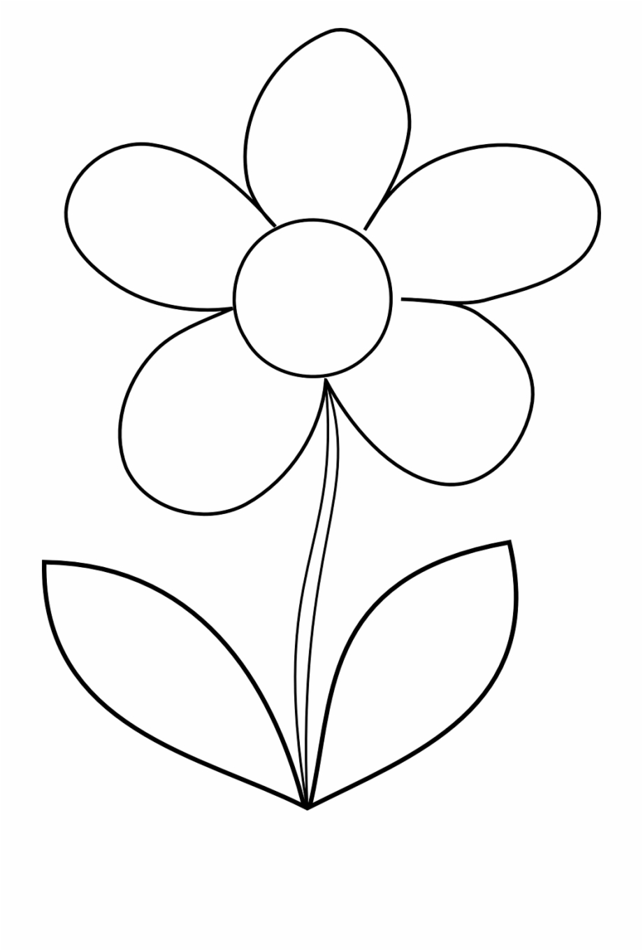 outline pictures of flowers for colouring flower daisy spring outline png image easy printable colouring pictures outline for flowers of
