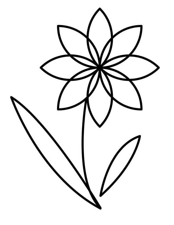 outline pictures of flowers for colouring flower outline coloring page kids play color flowers colouring outline for of pictures