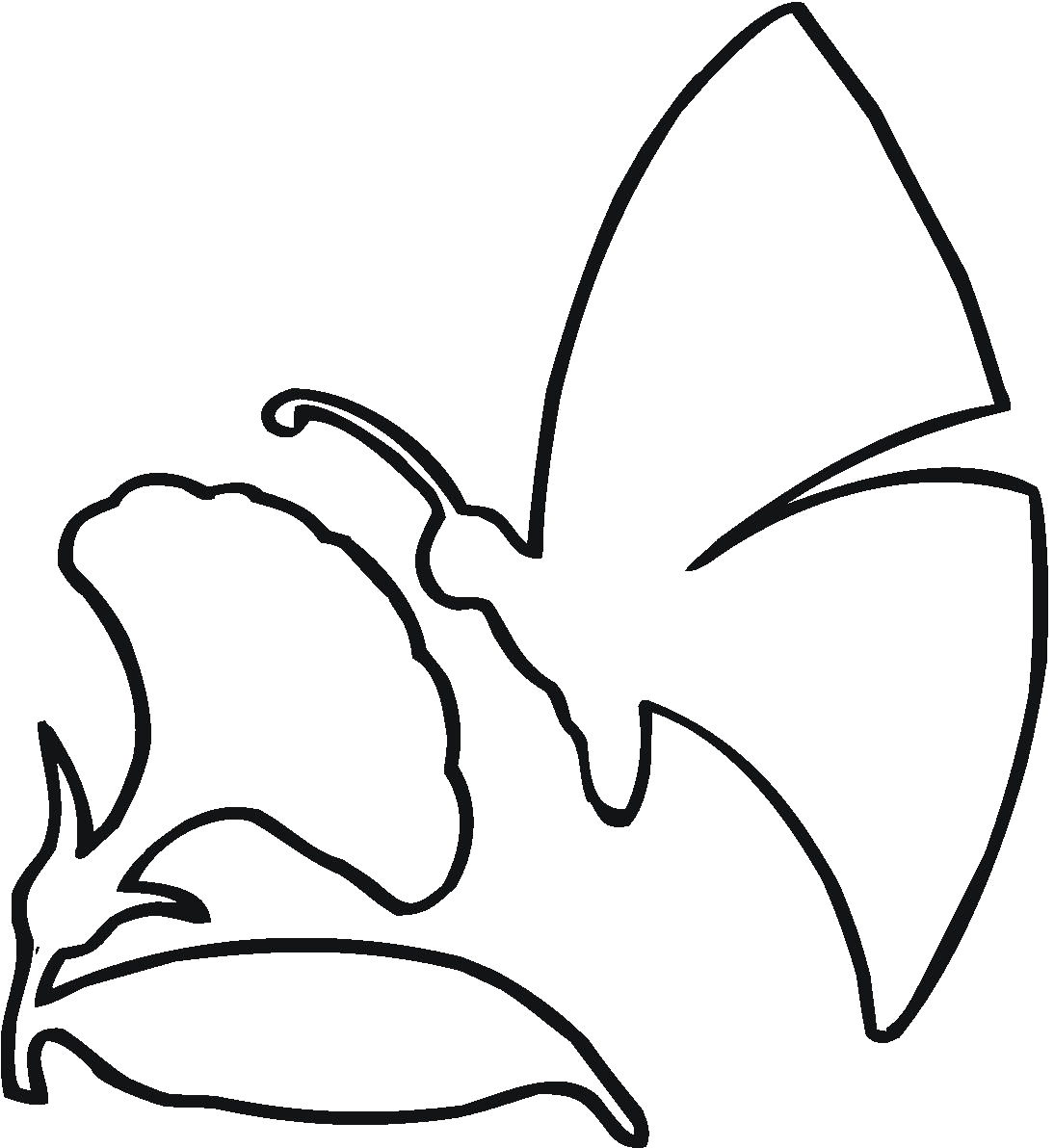 outline pictures of flowers for colouring flower outlines for coloring clipart best of for colouring pictures outline flowers