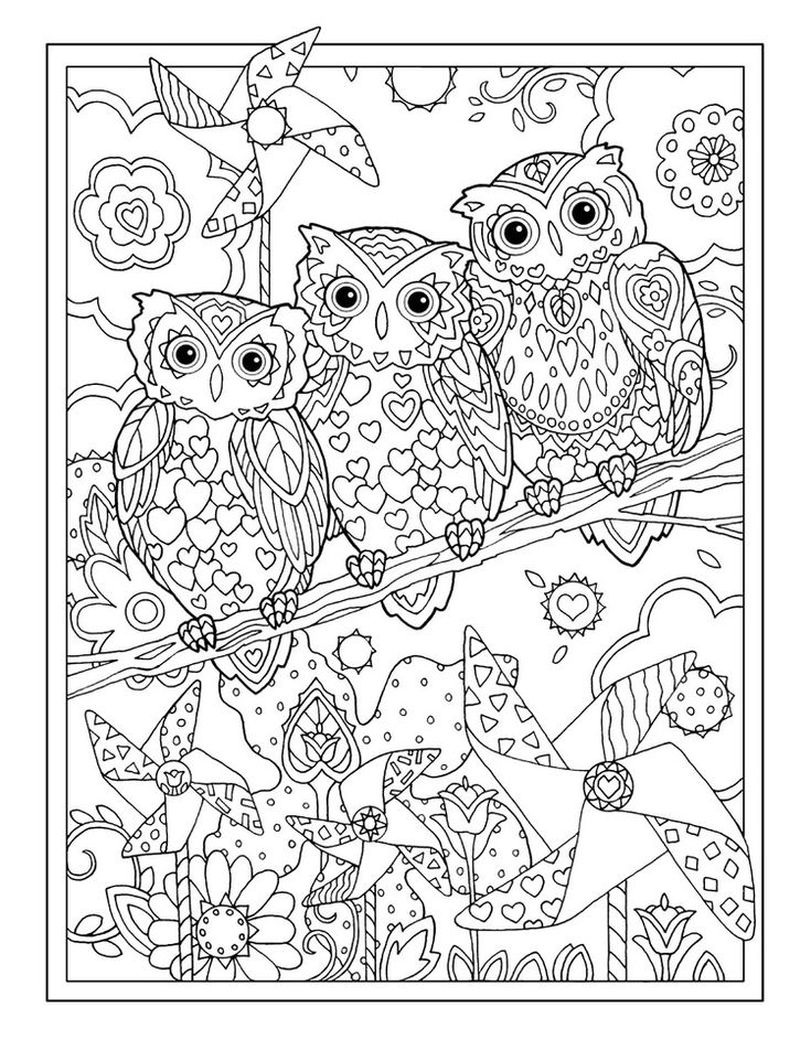 owl color sheets two owls owls adult coloring pages sheets color owl