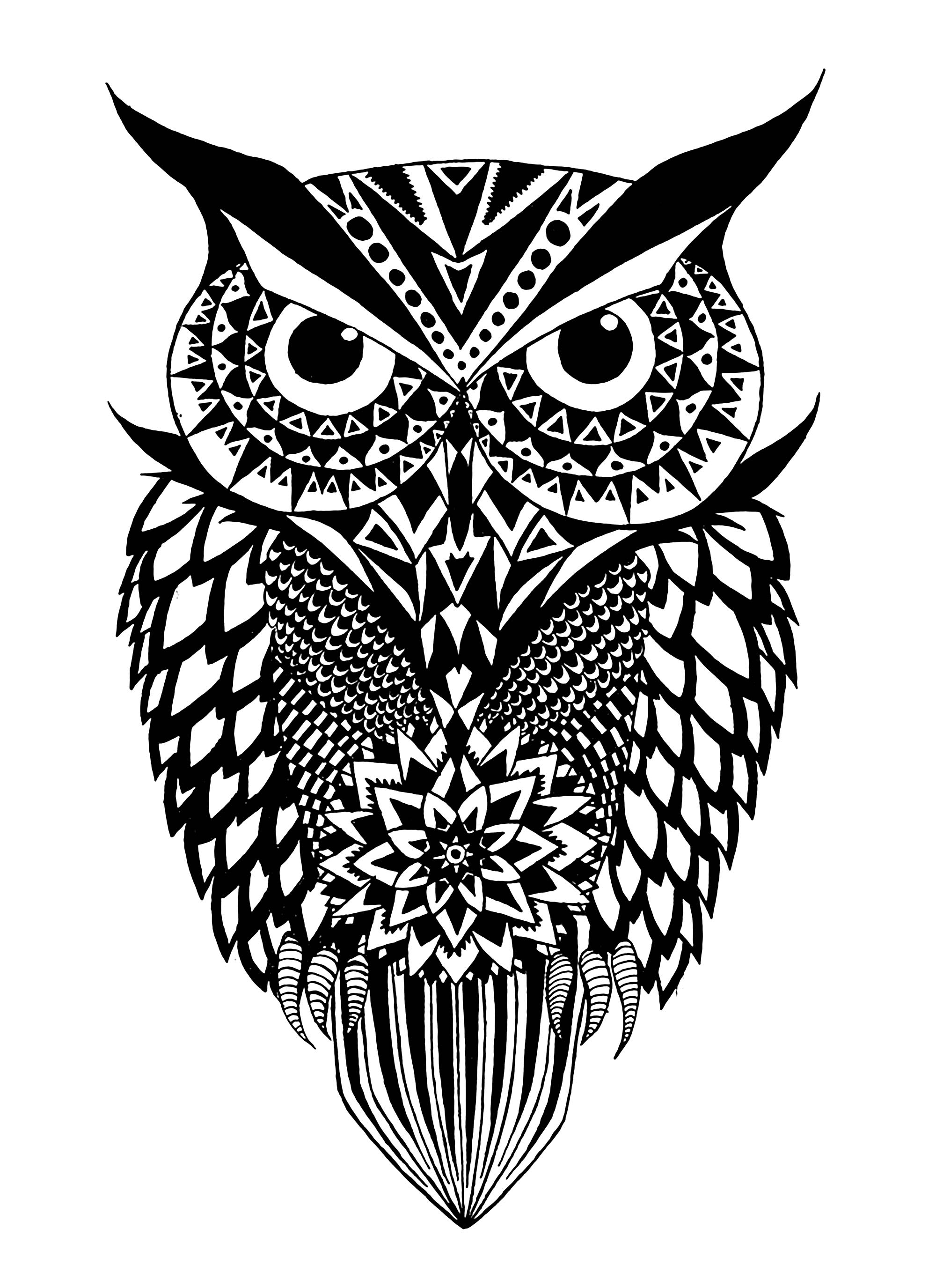 owl coloring images black and white owl owls adult coloring pages images owl coloring