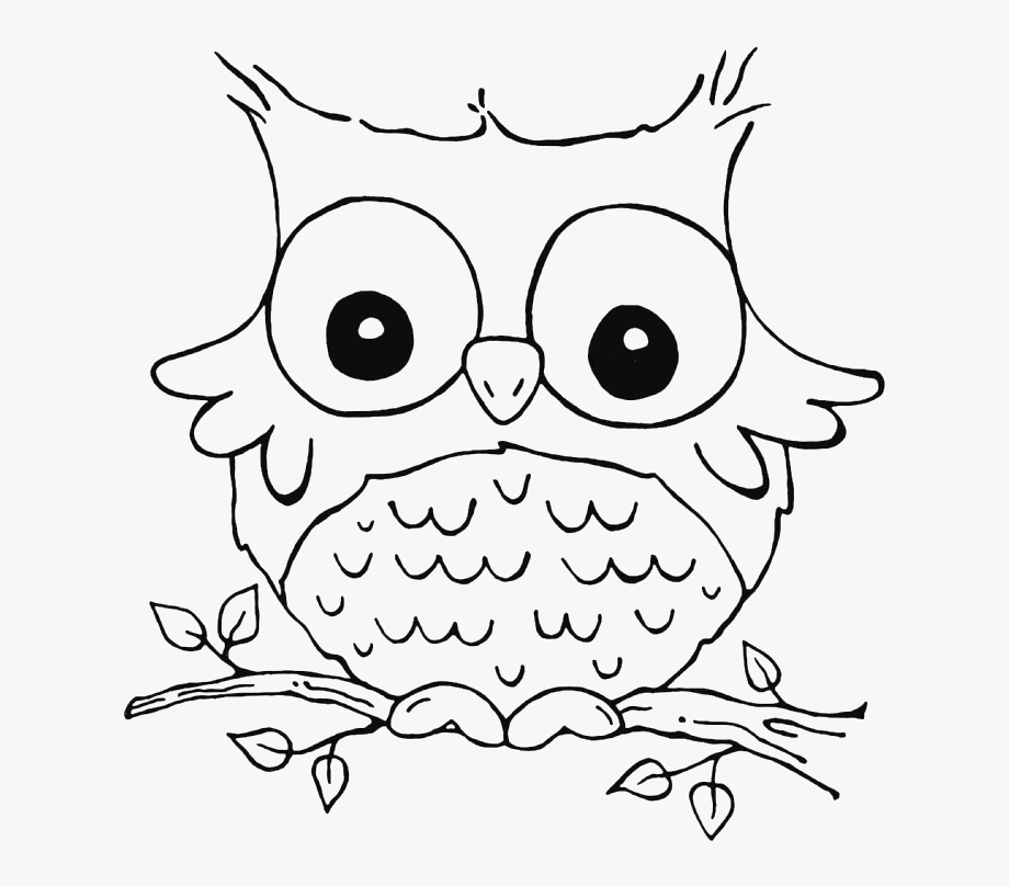 owl images to color owl coloring pages for kids coloring home color to images owl