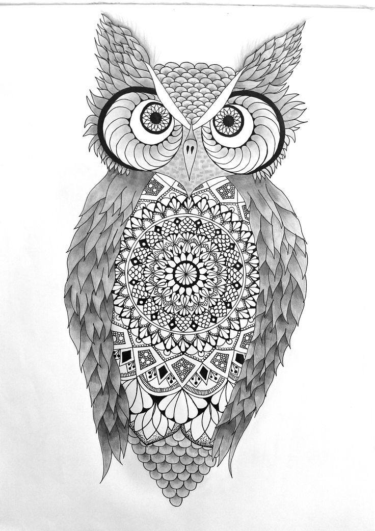 owl mandala i hand drew this owl mandala i love the zentangle art and owl mandala