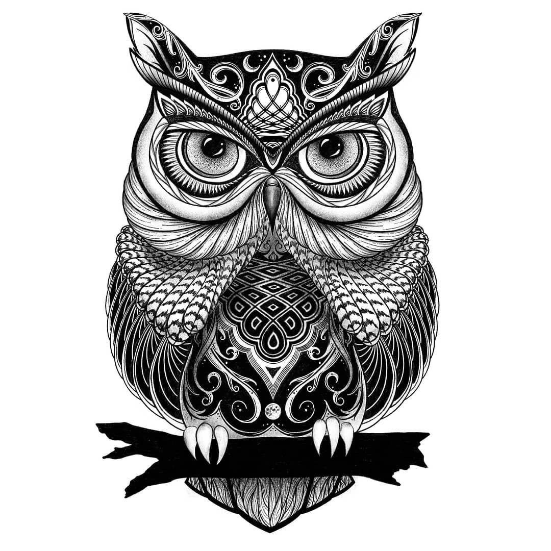 owl mandala owl with big head owls adult coloring pages mandala owl