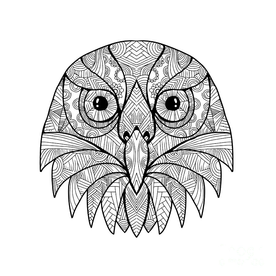 owl mandala quotowl mandala quot by tiffanih redbubble mandala owl