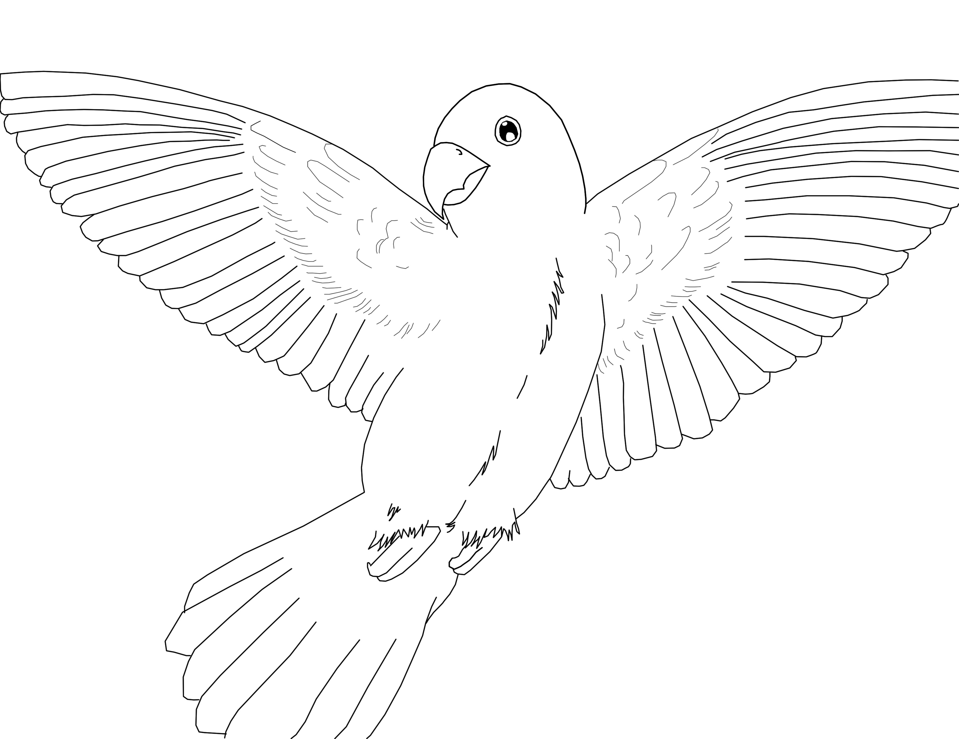 parrot to colour free printable parrot coloring pages for kids colour parrot to