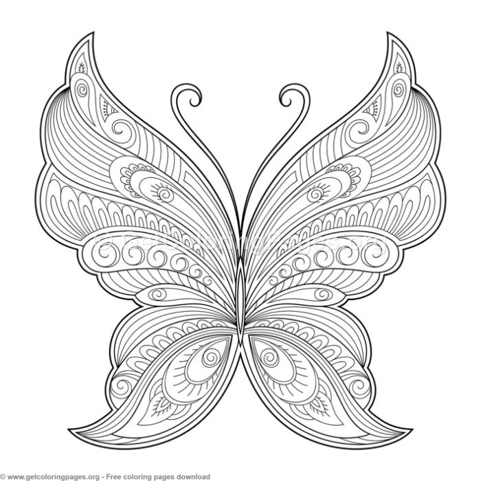 pattern pictures to colour 20 attractive coloring pages for adults we need fun colour pattern pictures to