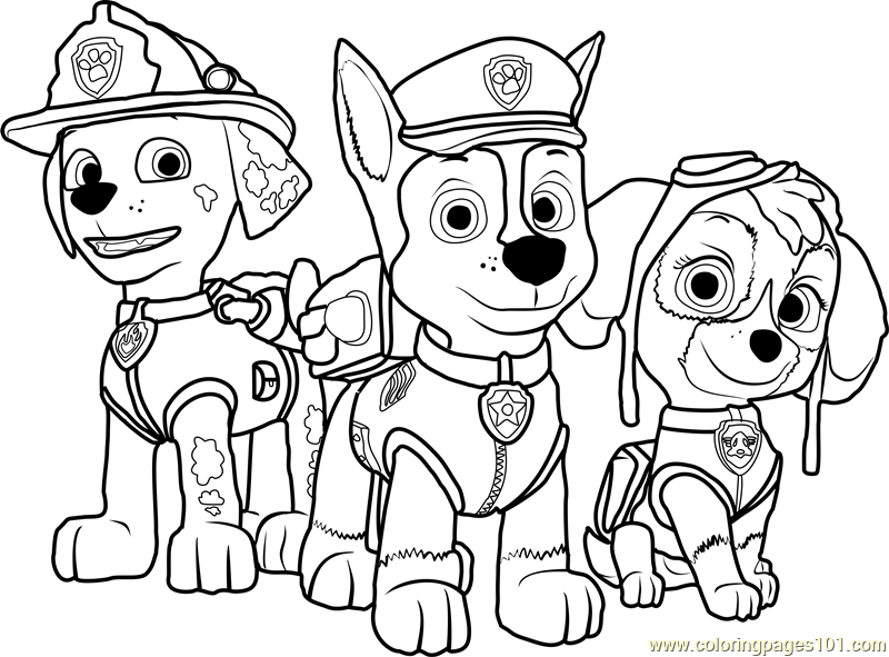 paw patrol for coloring everest paw patrol coloring lesson kids coloring page for coloring patrol paw