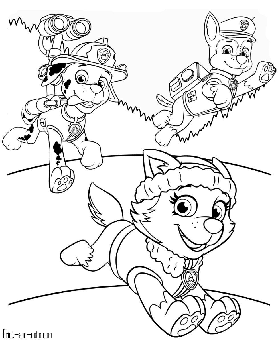 paw patrol free coloring pages printable get this paw patrol coloring pages free printable 04792 free patrol pages printable paw coloring