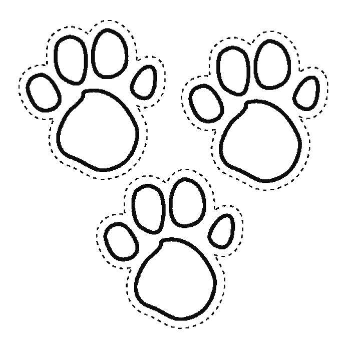 paw prints coloring pages paw print coloring page clipart best coloring pages paw prints
