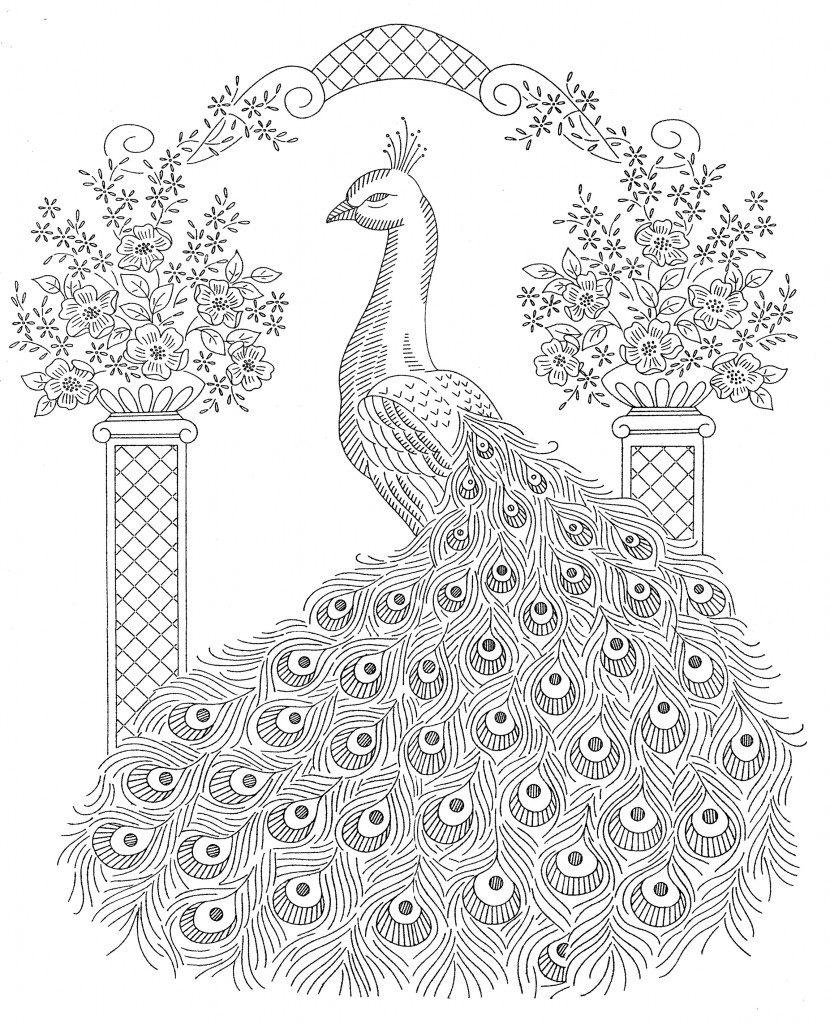peacock coloring pages for adults hand drawn peacock for anti stress coloring page stock pages for coloring peacock adults