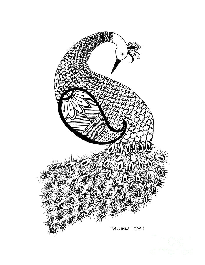 peacok drawing peacock drawing black and white at getdrawings free download drawing peacok