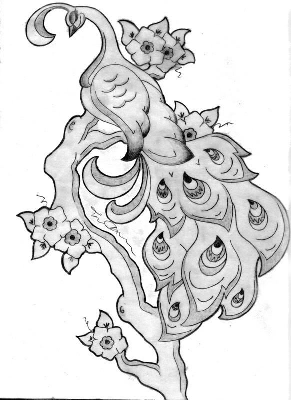 peacok drawing peacock drawing by mafidia on deviantart peacok drawing