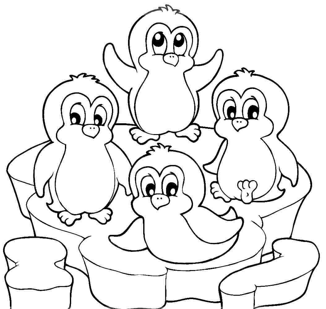 penguin colour in printable penguin coloring pages for kids cool2bkids penguin in colour