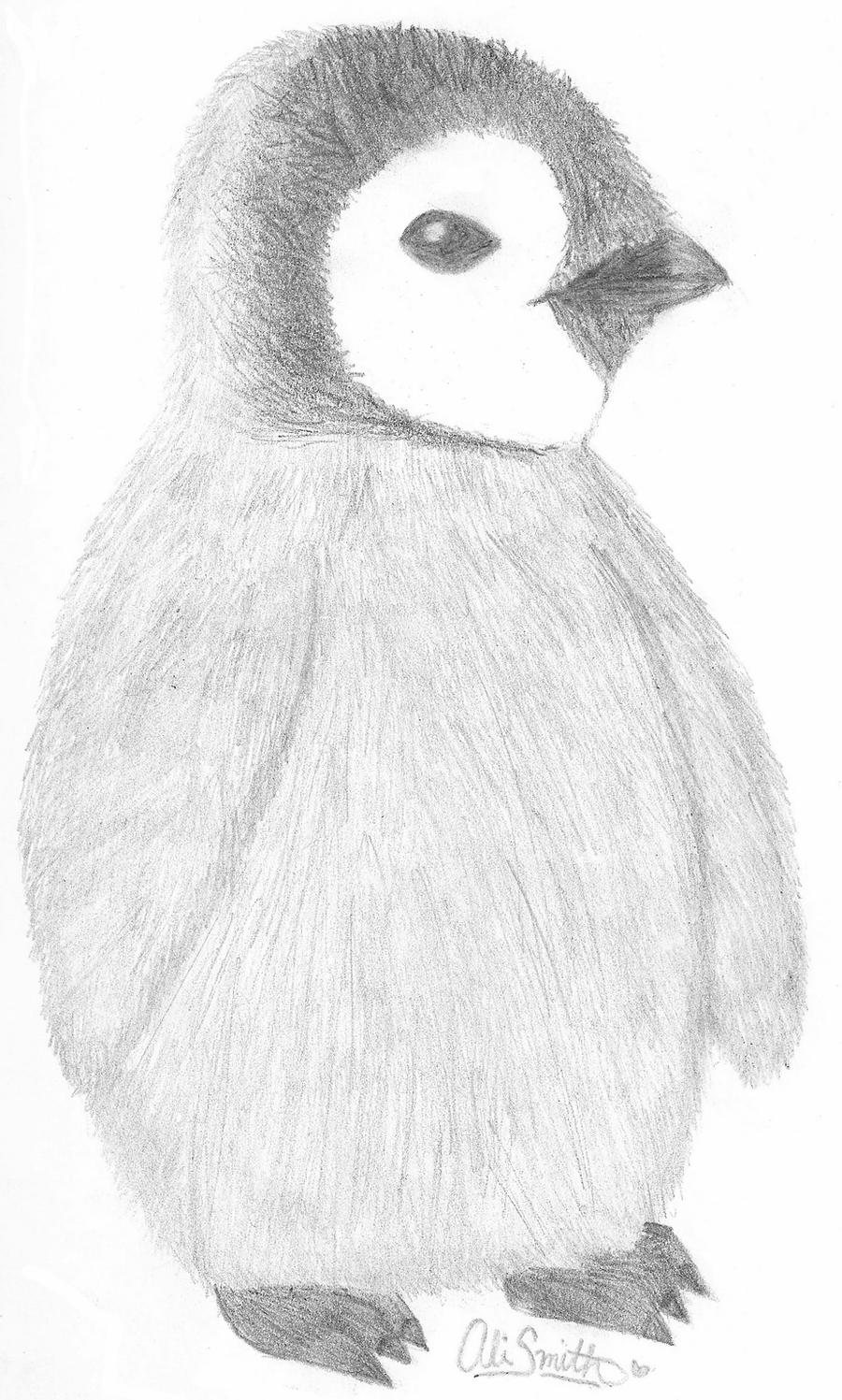 penguin drawing how to draw a penguin draw central penguin drawing
