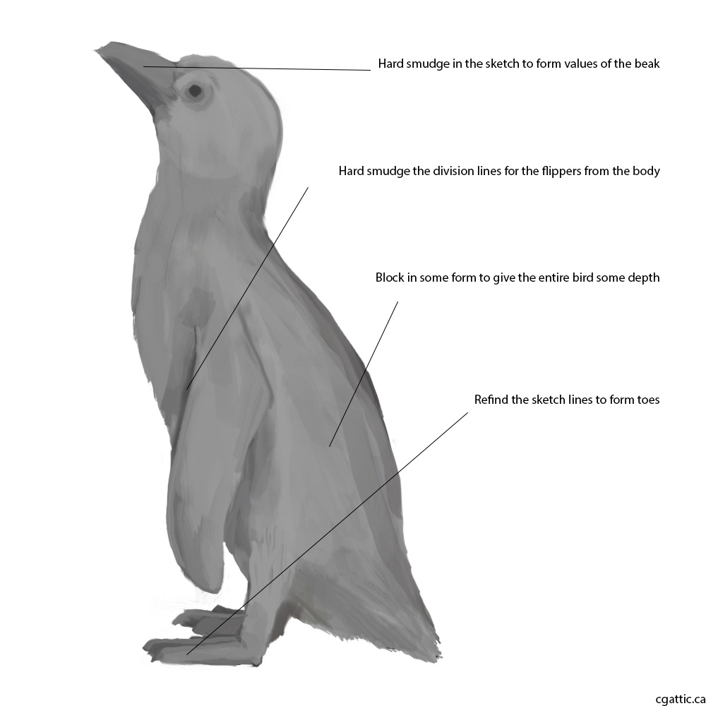 penguin drawing realistic penguin drawing in 4 steps with photoshop drawing penguin