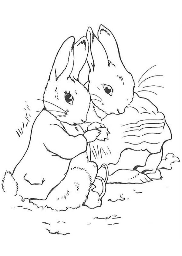 peter max coloring pages peter rabbit and his mother get into blanket it is cold peter pages coloring max