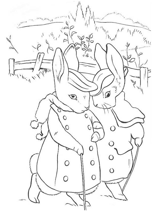 peter max coloring pages the tale of peter rabbit coloring page coloring sky coloring max pages peter