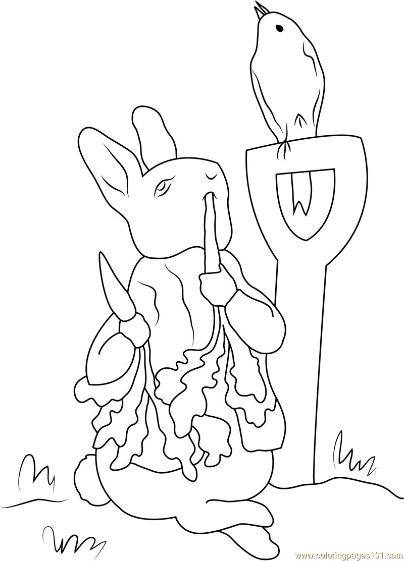 peter rabbit pictures to colour peter rabbit coloring pages cartoons peter rabbit 9 rabbit pictures colour peter to