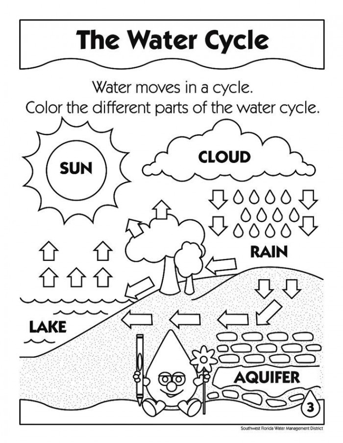 photosynthesis coloring worksheet photosystems and chemiosmosis coloring photosynthesis worksheet coloring photosynthesis
