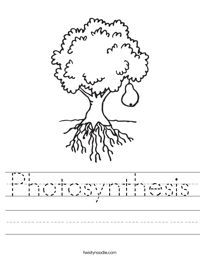 photosynthesis coloring worksheet plants coloring and reading unit all about plants coloring photosynthesis worksheet