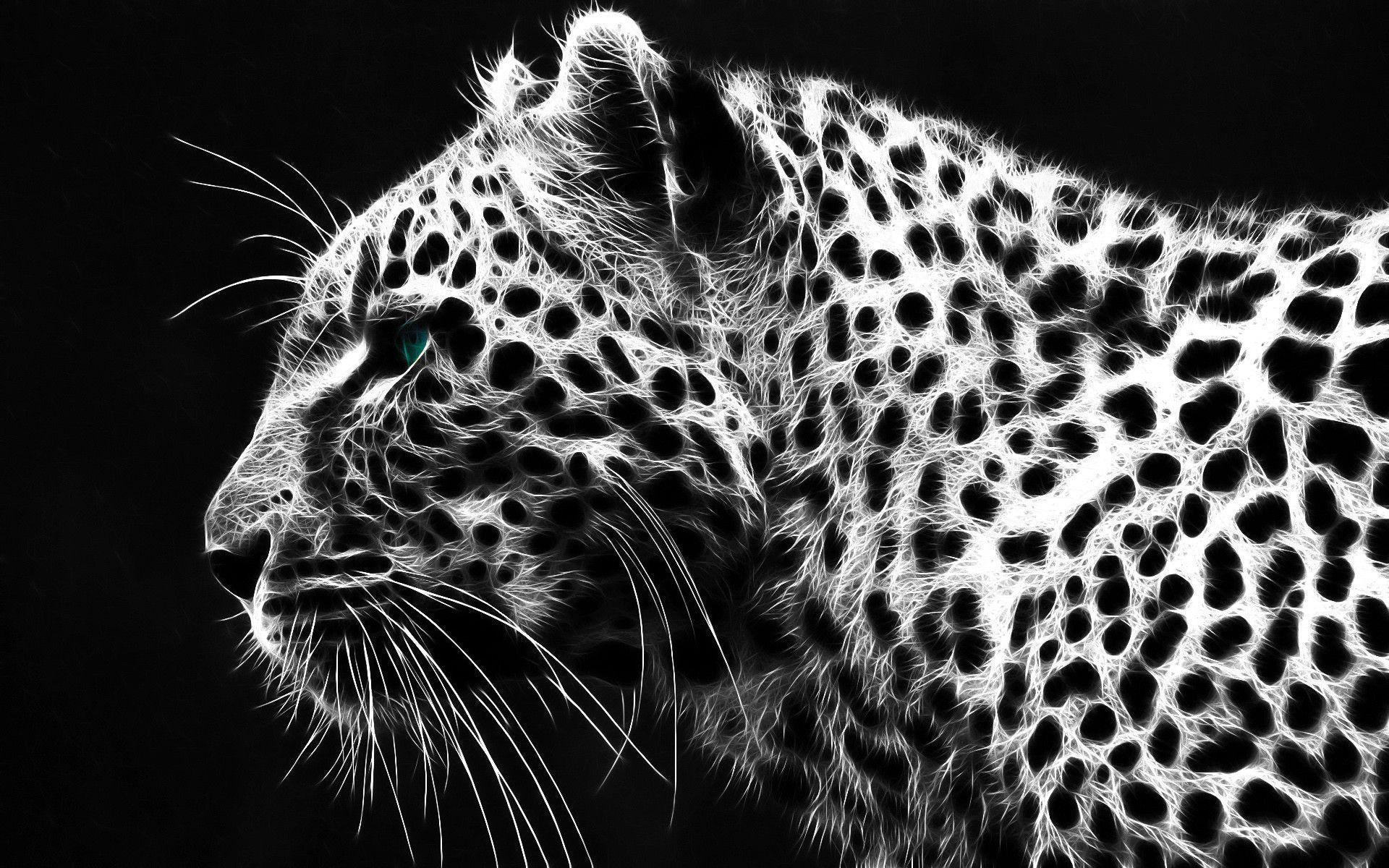 picture of a cheetah cheetah wallpapers hd wallpaper cave cheetah picture of a