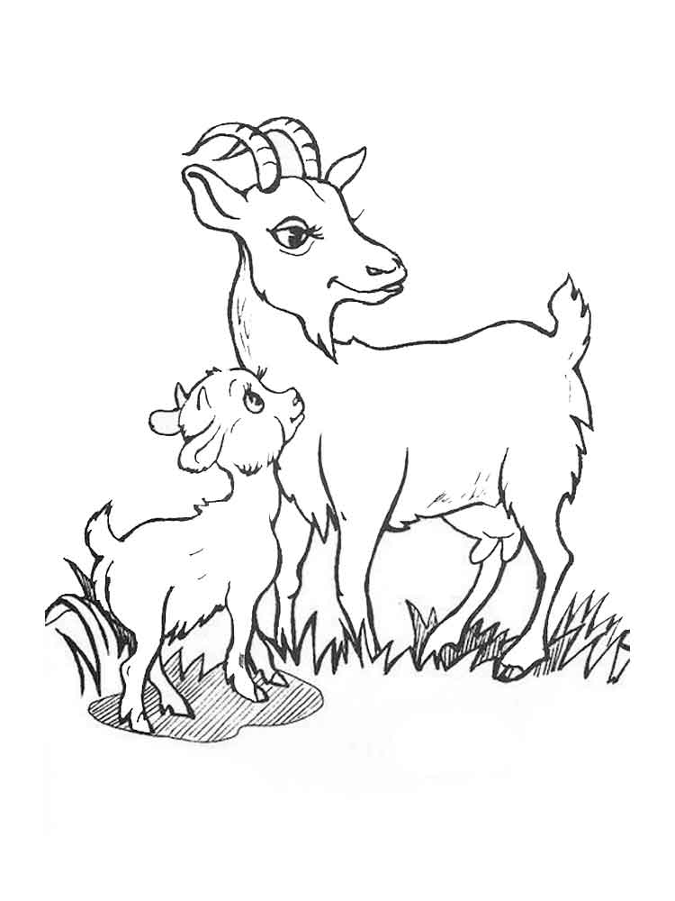 picture of a goat to color bleating goats 18 goat coloring pages and pictures print of a color picture to goat