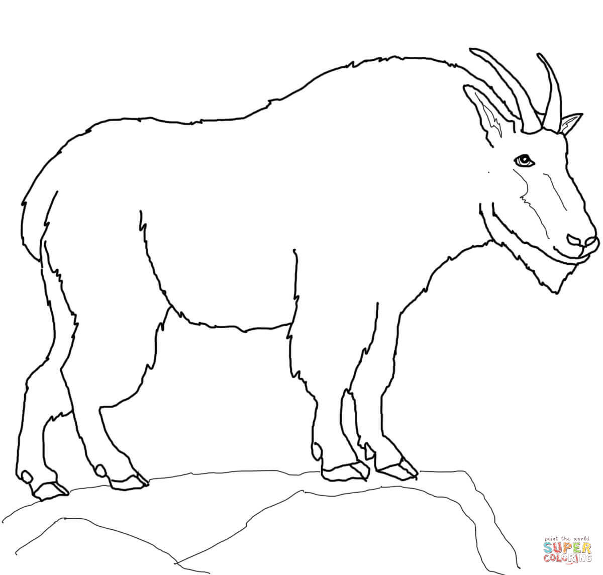 picture of a goat to color bleating goats 18 goat coloring pages and pictures print picture color of a to goat