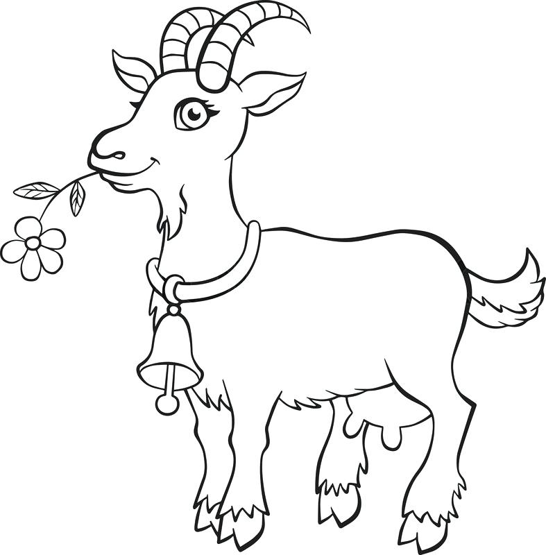 picture of a goat to color goat coloring pages picture goat to color of a