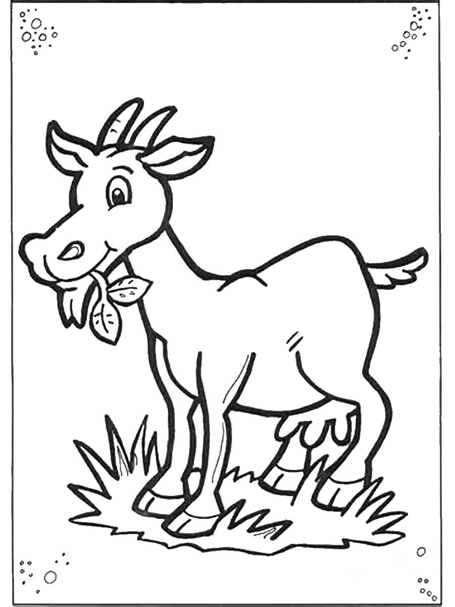 picture of a goat to color mountain goat coloring page free printable coloring pages goat a color picture to of