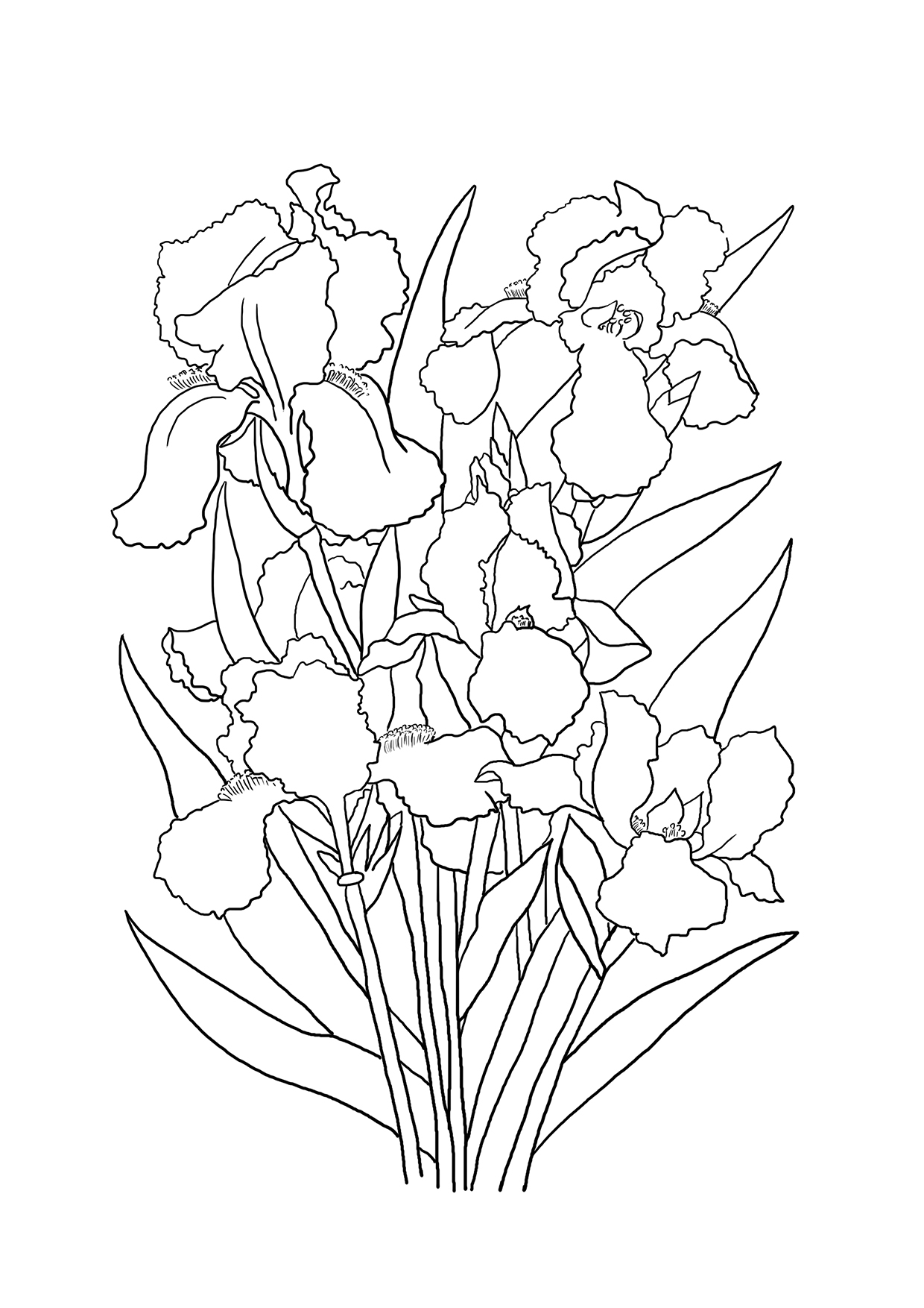 picture of flowers to colour flower coloring pages colour of picture to flowers