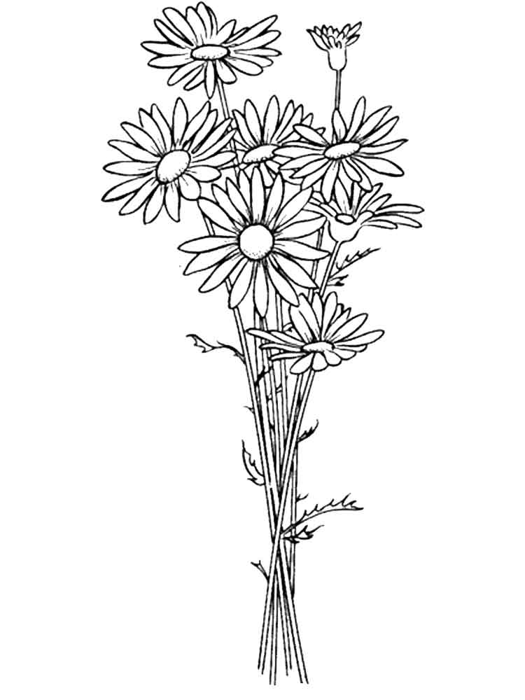 picture of flowers to print free printable sunflower coloring pages for kids of to flowers picture print