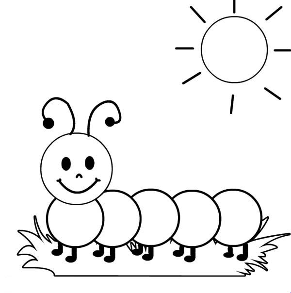 pictures of caterpillars to color free printable caterpillar coloring pages for kids of pictures caterpillars to color