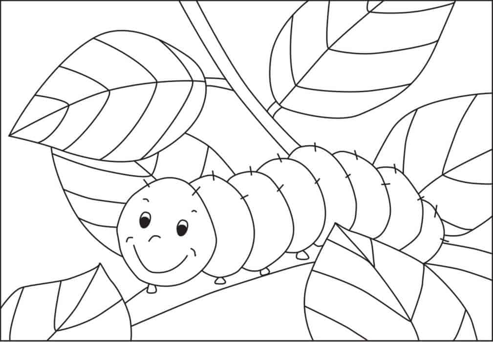 pictures of caterpillars to color free printable caterpillar coloring pages for kids to color caterpillars pictures of
