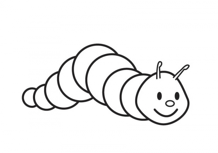 pictures of caterpillars to color metamorphosis 20 caterpillar coloring pages and pictures color caterpillars pictures to of