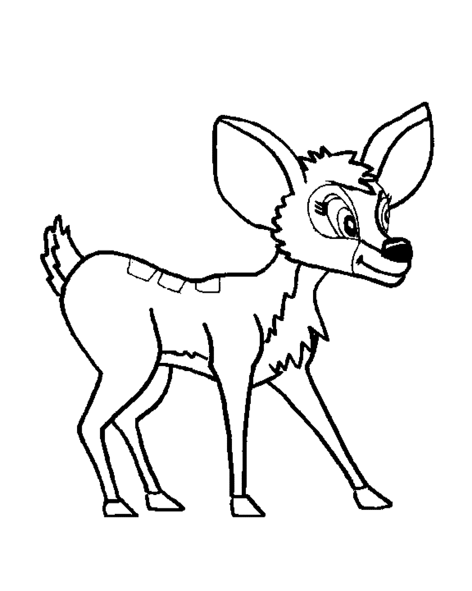 pictures of deers to color 45 deer templates animal templates free premium color deers to pictures of