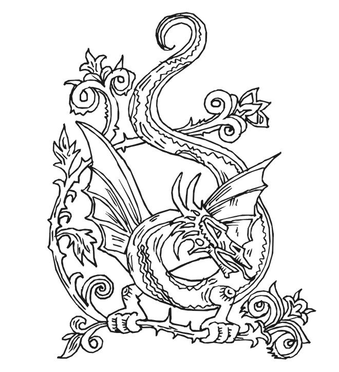 pictures of dragons to colour in 35 free printable dragon coloring pages of colour dragons in pictures to