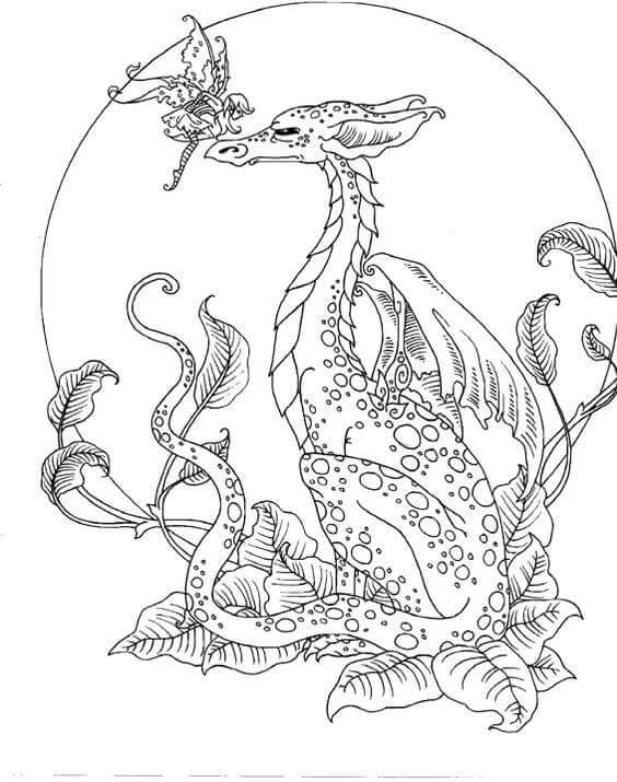 pictures of dragons to colour in dragon colouring book 52 pages infinite combinations in to colour of pictures dragons