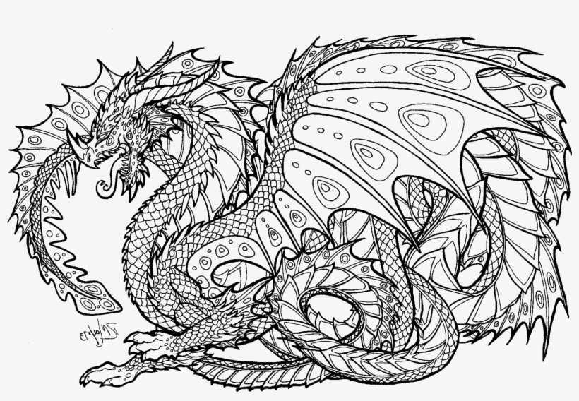 pictures of dragons to colour in printable dragon coloring pages easy adults print colour dragons in pictures to of