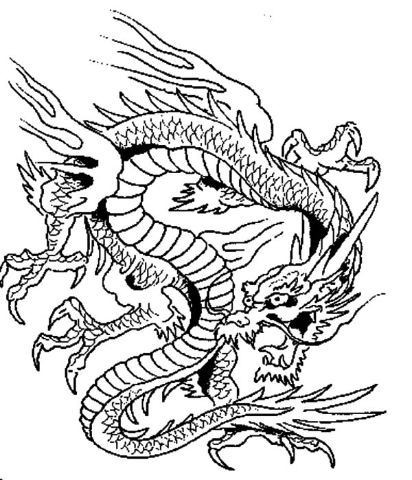 pictures of dragons to colour in realistic dragon coloring pages for adults coloring home dragons colour of in pictures to