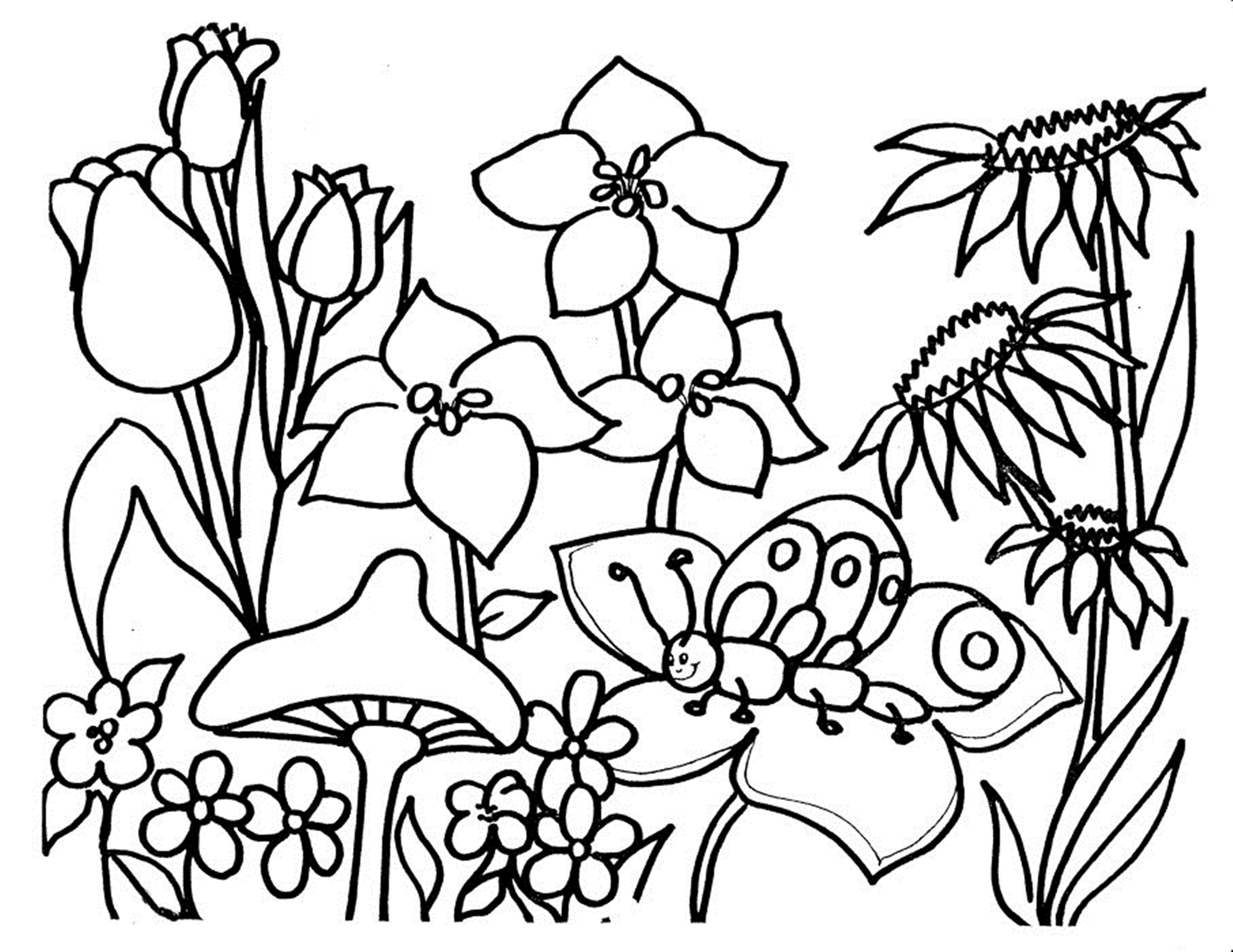 pictures of flowers to color coloring town of flowers pictures color to
