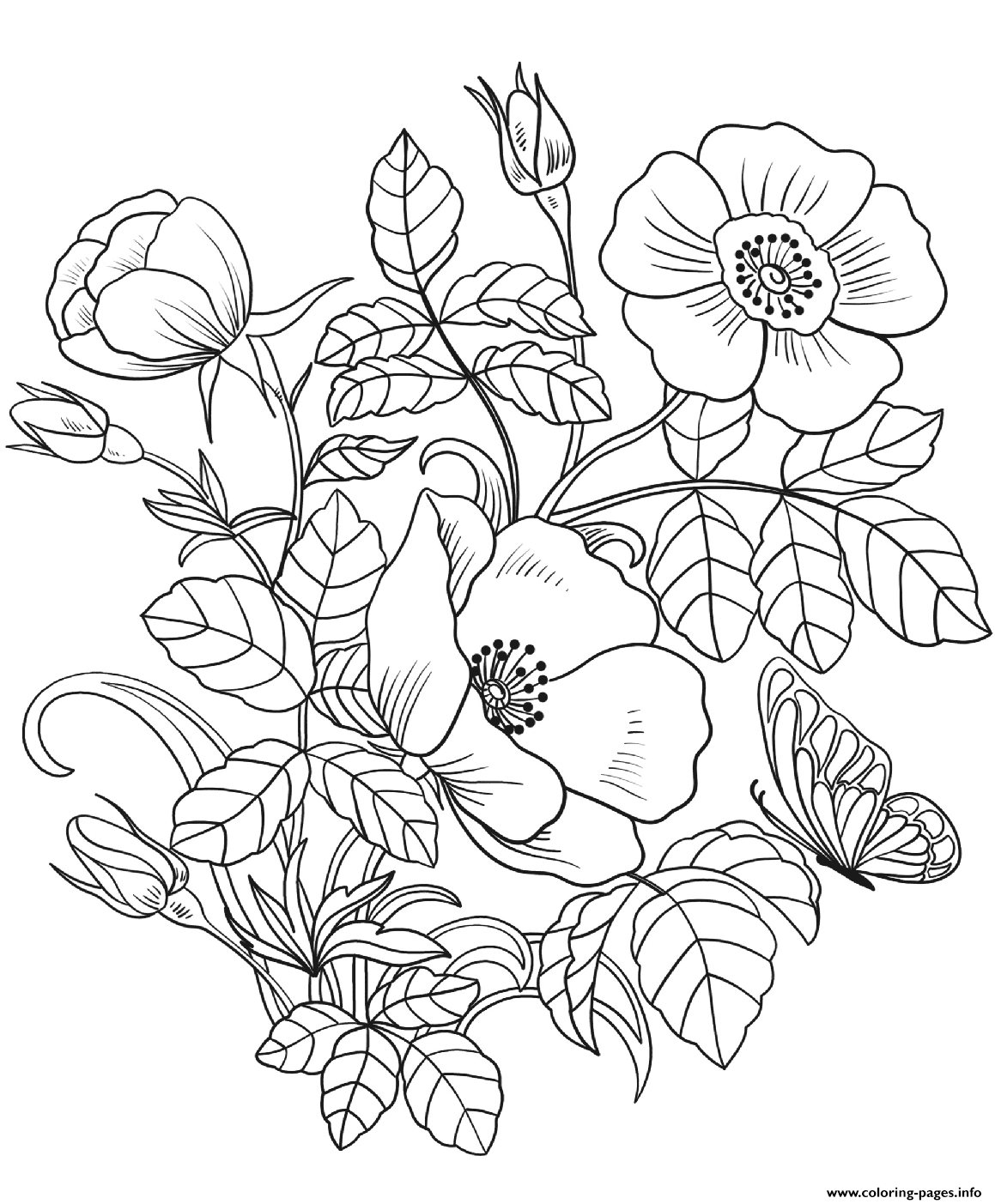 pictures of flowers to color free printable flower coloring pages for kids best color of to flowers pictures